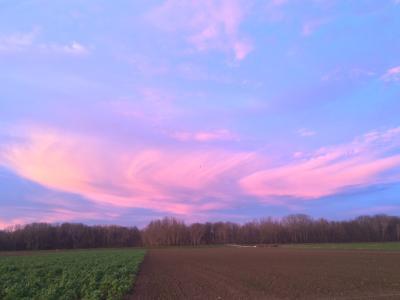 Sonnenuntergang im Dezember